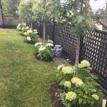 35 Stunning Backyard Garden Design Ideas (4)