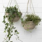30 Cute Hanging Plants to Decorate Your Interior Home (12)