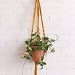 30 Cute Hanging Plants to Decorate Your Interior Home (13)
