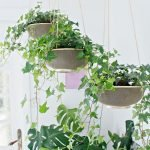 30 Cute Hanging Plants to Decorate Your Interior Home (29)