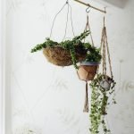 30 Cute Hanging Plants to Decorate Your Interior Home (8)