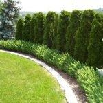 40 Beautiful Backyard Landscaping Ideas for Beauty Your Garden (12)