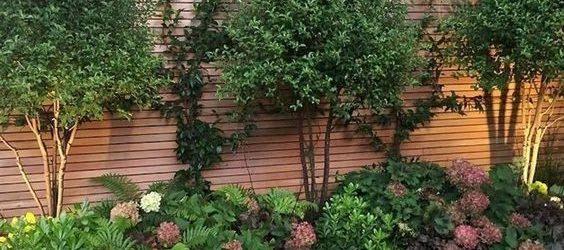 40 Beautiful Backyard Landscaping Ideas for Beauty Your Garden (17)