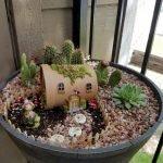 40 Beautiful Indoor Fairy Garden Ideas (11)