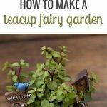 40 Beautiful Indoor Fairy Garden Ideas (21)