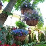 50 Awesome Modern Backyard Garden Design Ideas With Hanging Plants (11)
