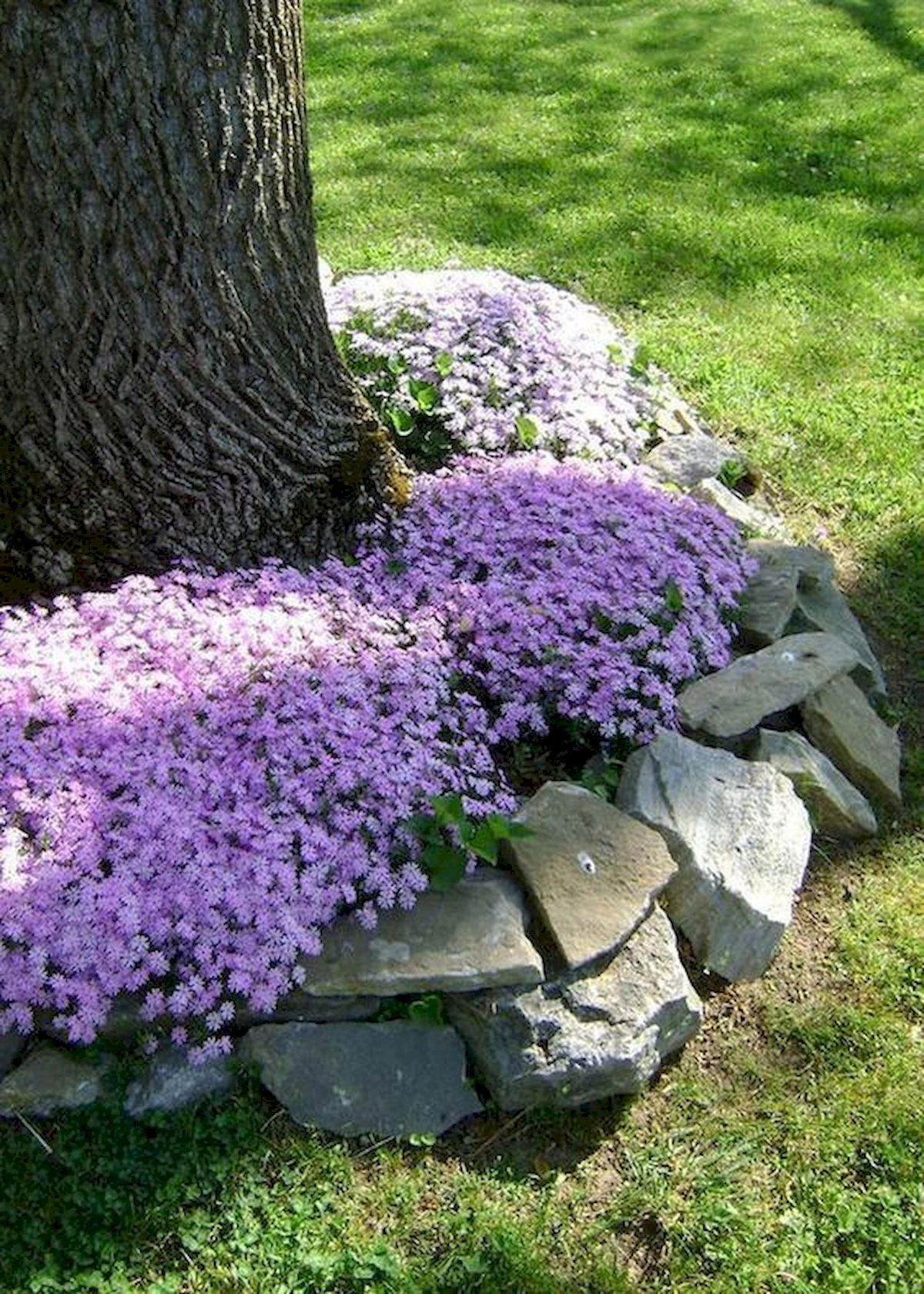 50 Beautiful Side Yard Garden Landscaping Ideas for Your House (14)