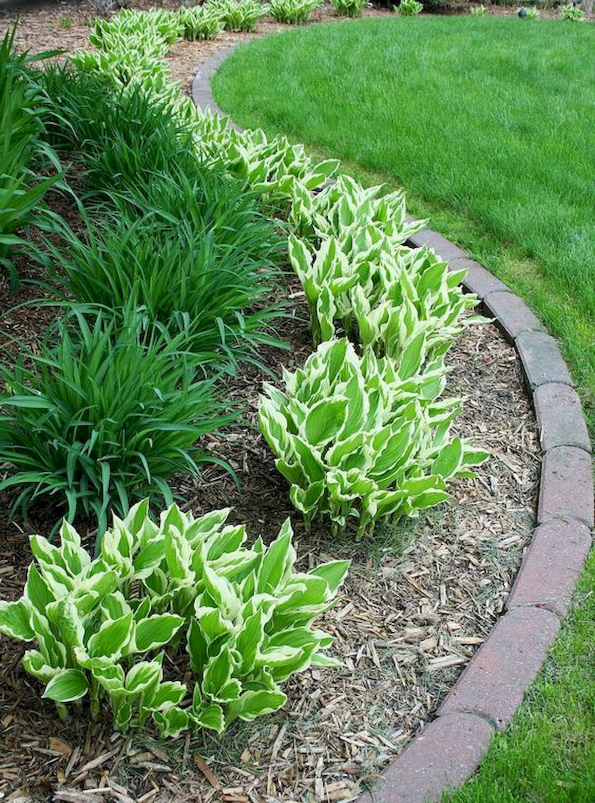 50 Beautiful Side Yard Garden Landscaping Ideas for Your House (5)
