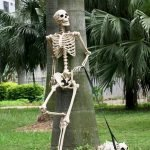 30 Awesome Outdoor Halloween Decorations Ideas (12)
