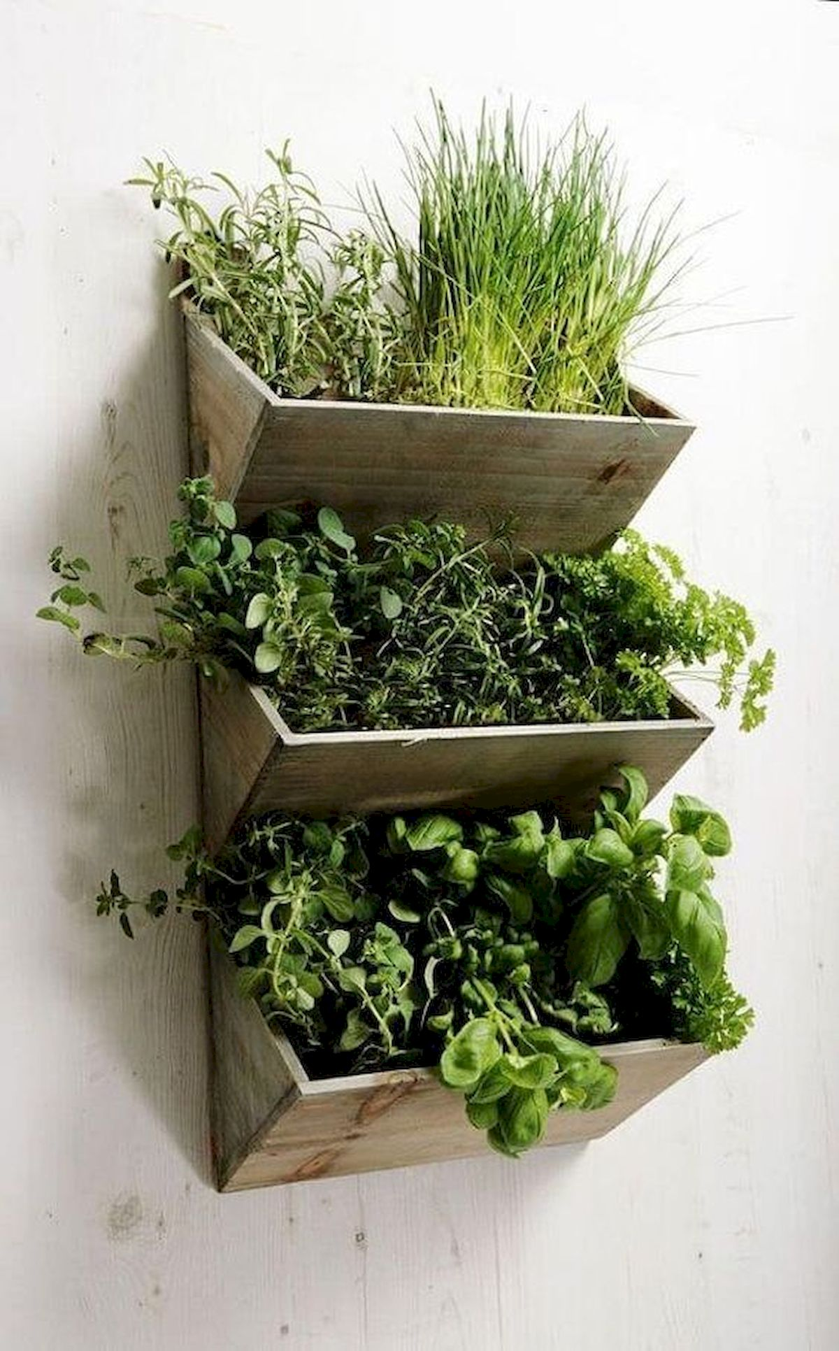 44 Fantastic Vertical Garden Ideas To Make Your Home Beautiful (12)