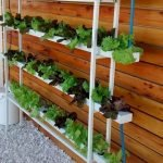 44 Fantastic Vertical Garden Ideas To Make Your Home Beautiful (17)