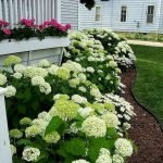 48 Stunning Front Yard Landscaping Ideas That Make Beautiful Garden (25)