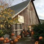 35 Cool Fall Outdoor Decor Ideas You Will Like (15)