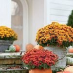 35 Cool Fall Outdoor Decor Ideas You Will Like (20)