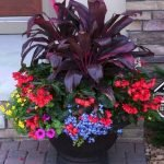 20 Awesome Planter Ideas for Your Front Porch (20)