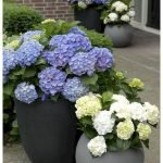 20 Awesome Planter Ideas for Your Front Porch (6)